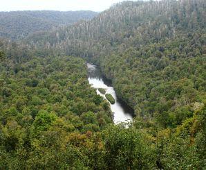 Arthur River view