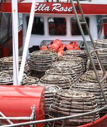 Crayfish pots