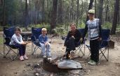 Campfire and marshmallows