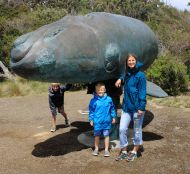 Whale Sculpture, Cockle Creek