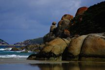Whiskey Bay Wilsons Promontory