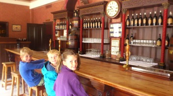 Saloon bar flies