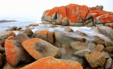 Bay of Fires Rocks