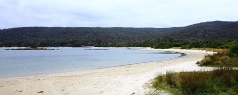 View of Cockle Creek