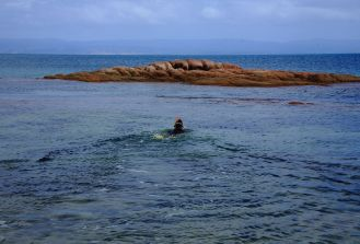 Snorkelling at Coles Bay