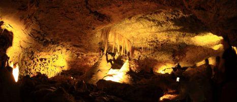 Victoria Cave, Naracoorte