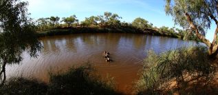 Algebuckina waterhole