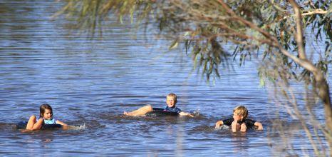Floating in the waterhole