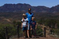 Bunyeroo valley lookout