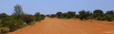 The road from Oodnadatta