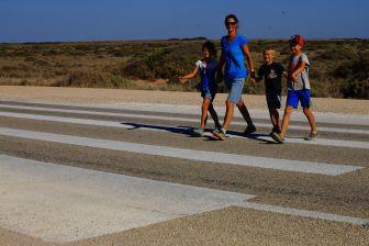Zebra crossing in the Nullarbor!