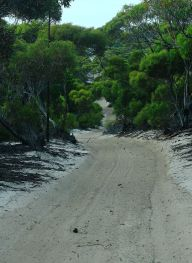 Sand track into the observatory