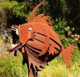 Piranha Letterbox