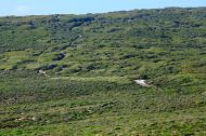 4WD track in West Cape Howe