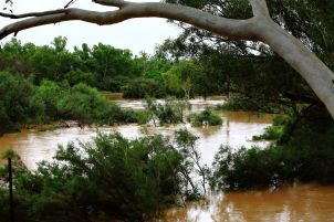 The flooded Murchison river