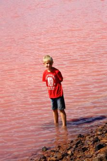 Standing in the Pink Lake