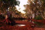 Beasley River