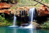 Fern Pools