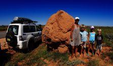 Coral Coast Termite Mound