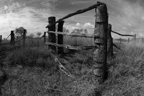 Original sheep fences