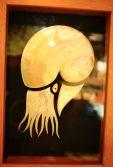 Nautilus by Gary Sibosado