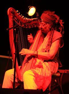 Harpist for Kerrianne Cox