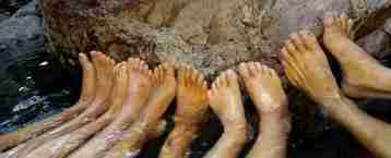 50 Toes enjoying Zebedee Springs
