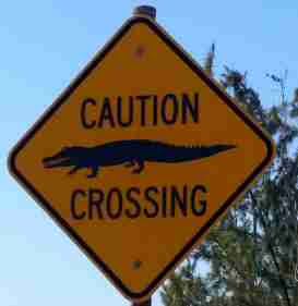 Camp road sign!