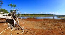 Cobourg wetlands drive