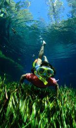 Hannah snorkelling in Bitter Springs