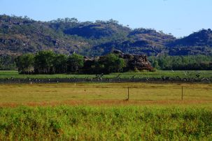 Arnhemland wetlands outside Kakadu
