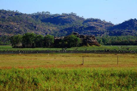 Arnhemland wetlands outside Kakadu