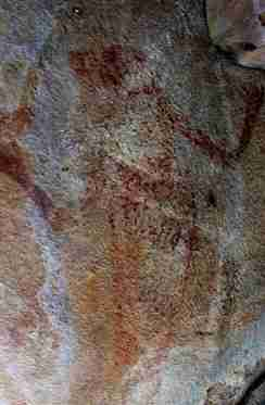 Lily Ponds rock art