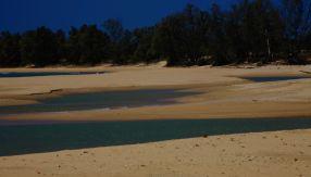 Woody Beach