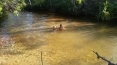 Swimming at Goanna Lagoon