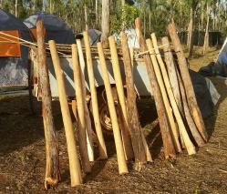 Didgeridoos for sale