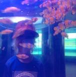 Xavier in the tunnel of Nemos