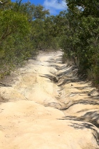 The 4WD track to Punsand
