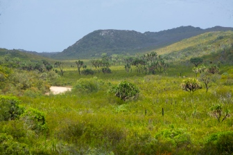 The road to Elim Beach