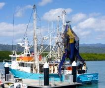 Cooktown trawler