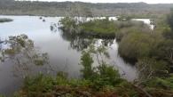Ocean Lake
