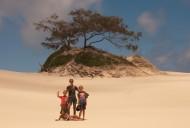 Sandy Cape sand dunes