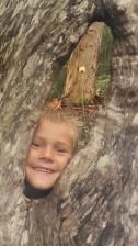Oscar looks through a tree!