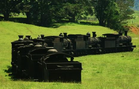 Old steam trains