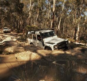 Some muddy pool fun!